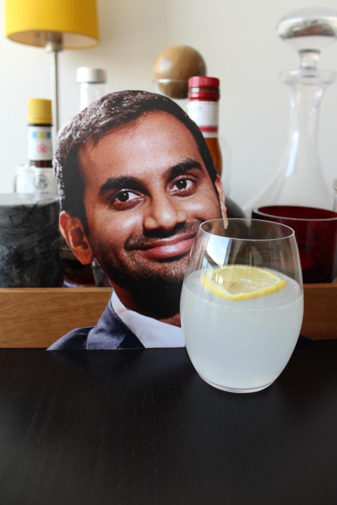 Gin Fizz Ansari_1