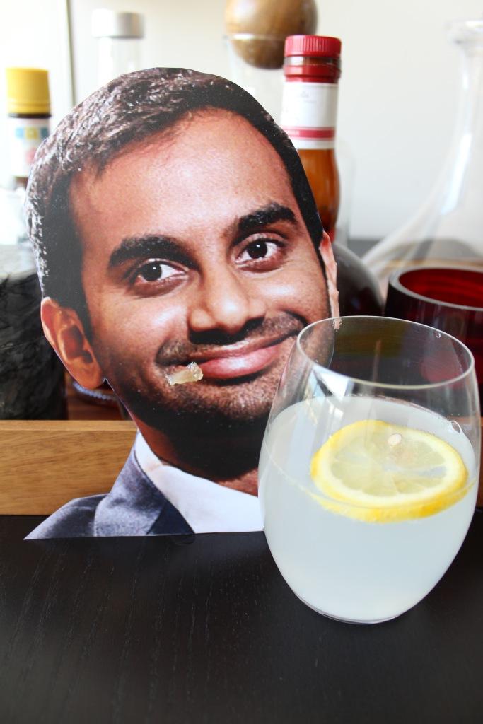 Gin Fizz Ansari_2